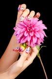 ногти цветка Стоковая Фотография
