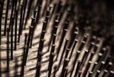 ногти Стоковые Фото