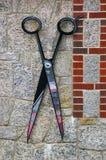 ножницы волос Стоковая Фотография RF