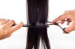 Ножницы и волосы Стоковая Фотография