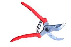 Ножницы сада. Стоковое Изображение