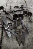 ножницы собрания старые Стоковая Фотография RF