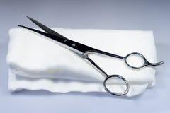 ножницы Стоковое Изображение