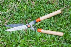 ножницы bush Стоковые Фотографии RF