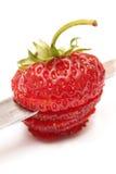 Нож и ломтики красной зрелой клубники Стоковое фото RF