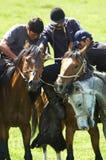 номад лошадей конкуренций kokpar традиционный Стоковые Фотографии RF