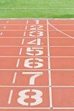 Номера майны следа атлетики Стоковые Фотографии RF