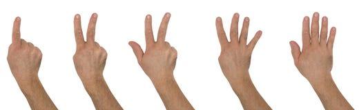 Номера рук Стоковое Изображение