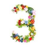 Номера сделанные из листьев & цветков Стоковые Изображения