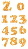 Номера сделанные из семян мозоли Стоковые Фото