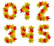 Номера сделанные от листьев осени Стоковые Фото