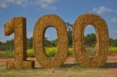 Номер в ферме цветка Стоковое Изображение RF