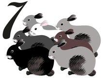 Номер собрания для детей: скотный двор - 7, кролики Стоковое Изображение RF