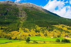 Норвегия, былой дом и ландшафт реки Стоковая Фотография