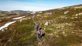 Норвегия - пара в плато гористой местности стоковые изображения