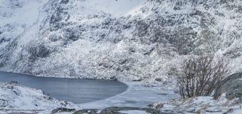 Норвежец путешествуя идеи Гавань Snowy с льдом на островах Lofoten стоковое изображение