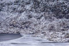 Норвежец путешествуя идеи Гавань Snowy с льдом на Lofoten стоковое фото