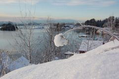 норвежская зима Стоковые Фотографии RF