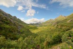 Норвежский ландшафт горы Стоковые Изображения RF