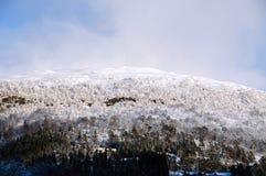 Норвежский ландшафт зимы стоковые изображения