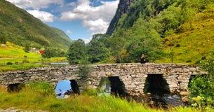 Норвежский ландшафт природы, горы Норвегии стоковое фото rf