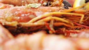 Норвежский омар с рисом акции видеоматериалы