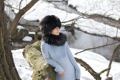 нордическая женщина Стоковое Фото