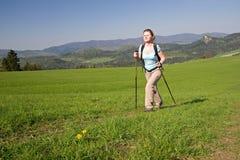 нордический гулять Стоковое Фото