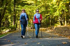Нордический идти - активные люди разрабатывая в парке Стоковая Фотография