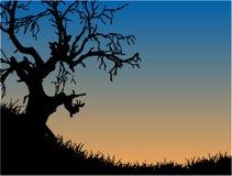 нормальный природы бесплатная иллюстрация