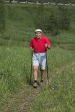 Нордический гулять стоковое фото rf
