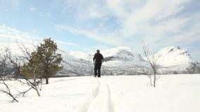 нордическое катание на лыжах сток-видео