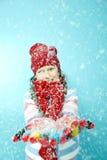 носить снежка шлема девушки славный стоковые изображения rf
