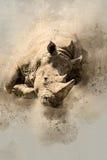 Носорог акварели Стоковые Изображения RF