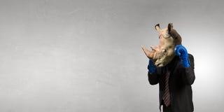 Носорог одетый в деловом костюме Мультимедиа Стоковые Изображения RF