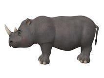 Носорог шаржа 3d Стоковая Фотография RF