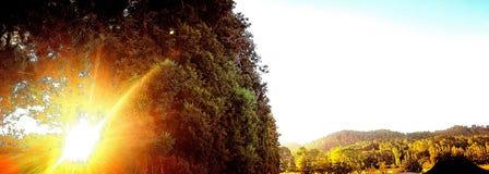 Ностальгия фермы Стоковое фото RF