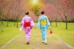 Нося милые девушки Японии кимоно идя совместно Стоковая Фотография RF