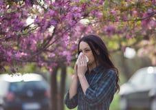 Нос женщины дуя из-за аллергии цветня весны Стоковая Фотография