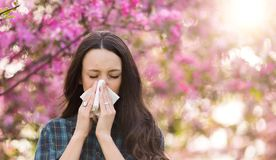 Нос женщины дуя из-за аллергии цветня весны Стоковое Фото