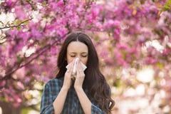 Нос женщины дуя из-за аллергии цветня весны Стоковое фото RF