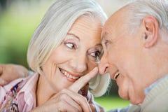 Нос касающего человека любящей старшей женщины Стоковое Изображение RF