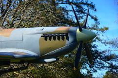 Нос Spitfire стоковое изображение rf