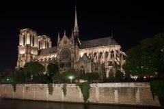 Нотре Даме de Париж и Seine Стоковое Фото