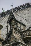 Нотр-Дам Парижа, Франции, fragement крыши стоковое изображение rf