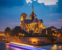Нотр-Дам de Париж Стоковые Изображения