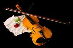 Нот листа скрипки и подняло Стоковое фото RF