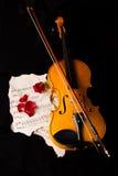 Нот листа скрипки и подняло Стоковые Изображения