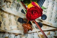 Нот листа скрипки и подняло Стоковые Фото