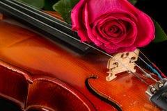 Нот листа скрипки и подняло Стоковая Фотография